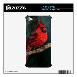 Winter Evergreen Primitive Christmas Red Cardinal Skin For The iPhone 4S