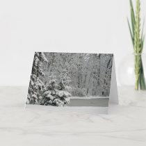 Winter Evergreens Notecard