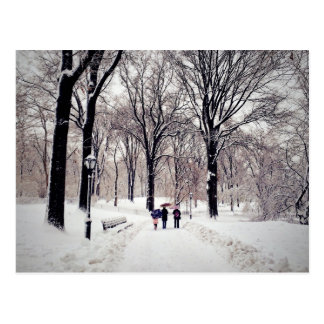 Winter Family Trip To Central Park Postcard