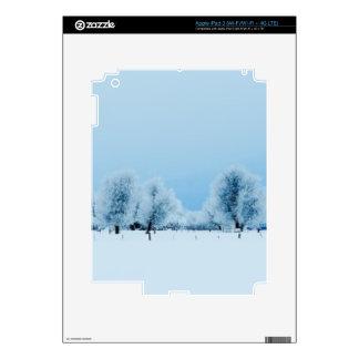Winter Farm iPad 3 Decals