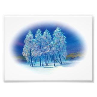 Winter Fir Trees Abstract Forest Artwork Photo Print