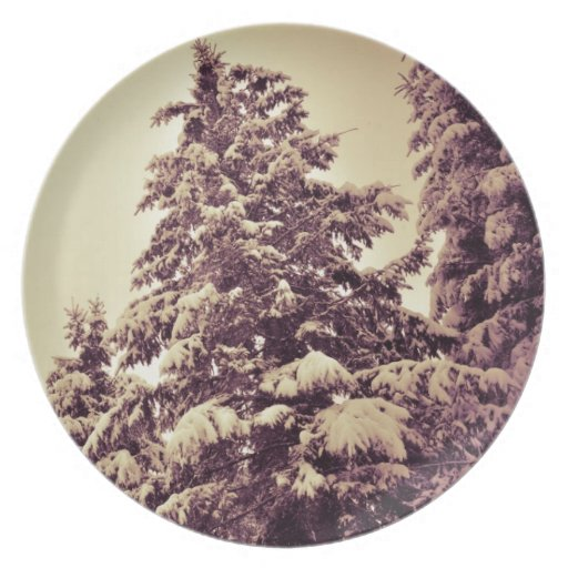 Winter firs plates