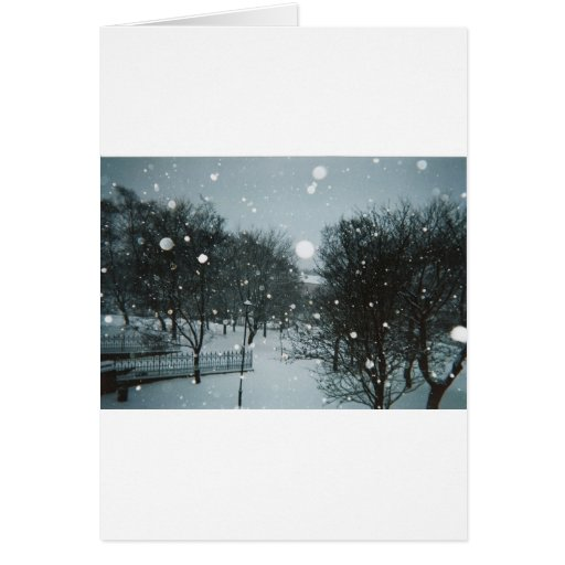 Winter Flakes Greeting Card