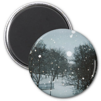 Winter Flakes Refrigerator Magnet