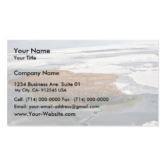 Winter Flock of Spectacled Eiders Business Card Templates