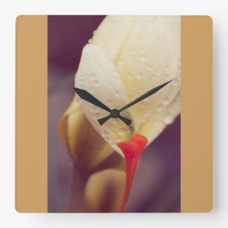 Winter flower and the raindrops square wall clock