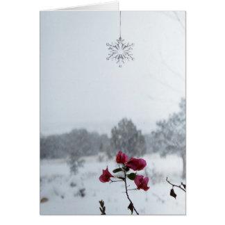 winter flowers, edgewood, nm card