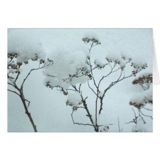 Winter Flowers Folding Card