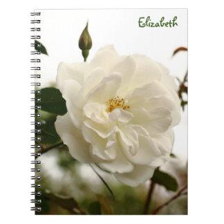 Winter Flowers In Tiberias, Israel Notebook