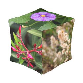 Winter Flowers In Tiberias, Israel Pouf Cube Pouf