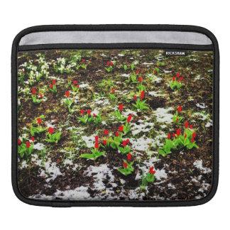Winter Flowers iPad Sleeve