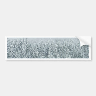 Winter Forest Bumper Sticker