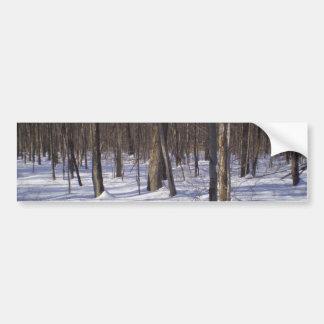 Winter Forest Car Bumper Sticker