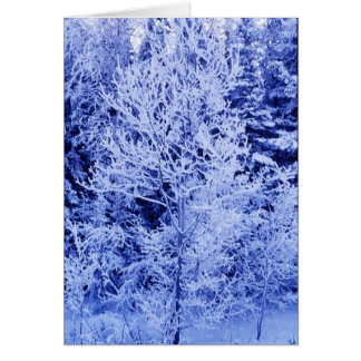 Winter forest card