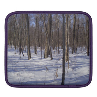 Winter Forest iPad Sleeve