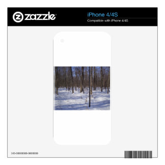 Winter Forest iPhone 4 Skins