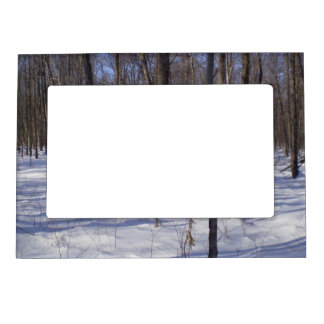 Winter Forest Magnetic Picture Frames