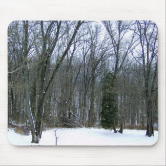 Winter Forest Scenery Mouse Pad