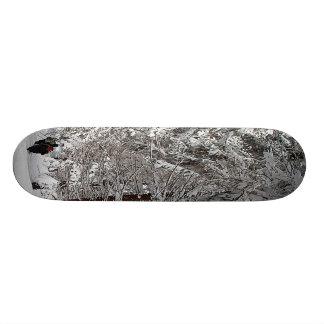 Winter Forest Skateboard