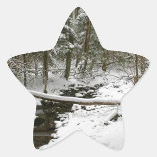 Winter Forest Star Sticker