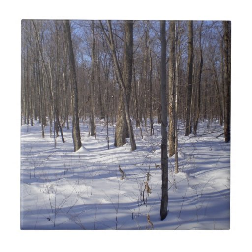 Winter Forest Tiles
