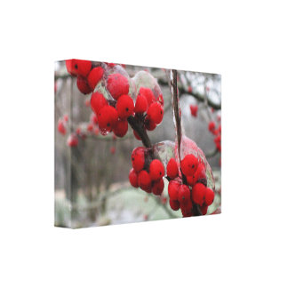 Winter Freeze and Ice on Red Berries Canvas Print