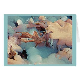 Winter Freeze Card