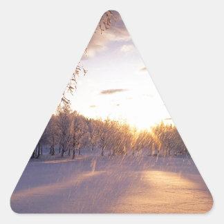 Winter Fresh Fallen Snow Arctic Valley Triangle Sticker