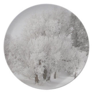 Winter Frost Covered Trees Dinner Plate