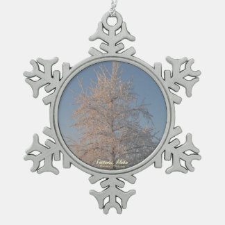 Winter Frosted Tree Silver Snowflake Ornament