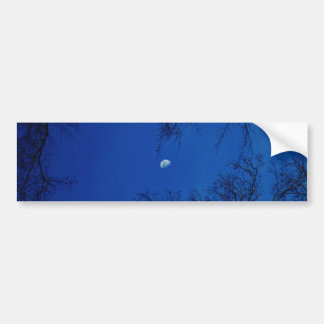 Winter Full Moon With Trees Car Bumper Sticker
