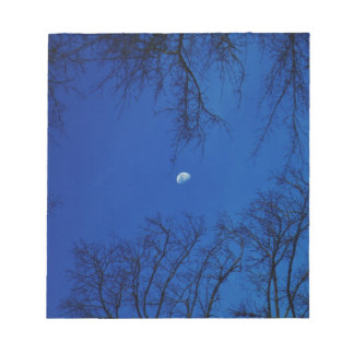 Winter Full Moon With Trees Notepads