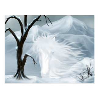Winter ghost horse postcard