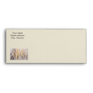 Winter grass abstract envelope