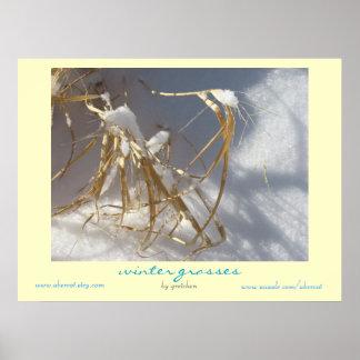 Winter Grasses Poster