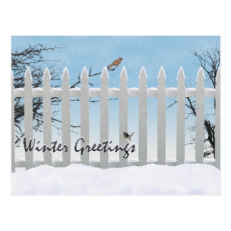 Winter greetings post card
