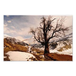 Winter grips Manang Art Photo