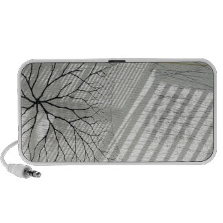 Winter Haven Abstract Mp3 Speakers