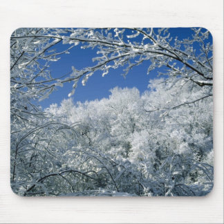Winter haven mouse pad