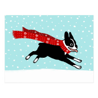 Winter Holiday Boston Terrier Wearing Red Scarf Postcard