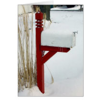 "Winter Holiday Card: ""Snow Mail"" Card"