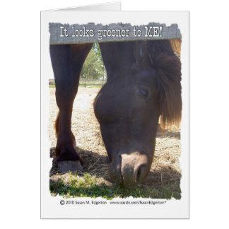 Winter Horse Card