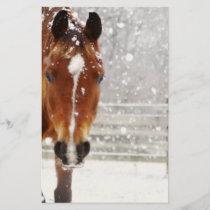 Winter Horse Christmas