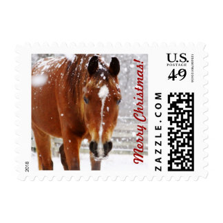 Winter Horse Christmas Stamp