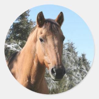 Winter horse classic round sticker