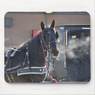 Winter  Horse Hitch Mouse Pad