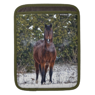 Winter Horse in Snowy Field iPad Sleeve