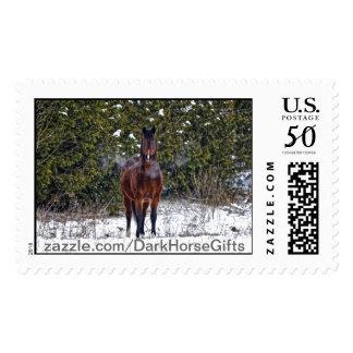 Winter Horse in Snowy Field Postage