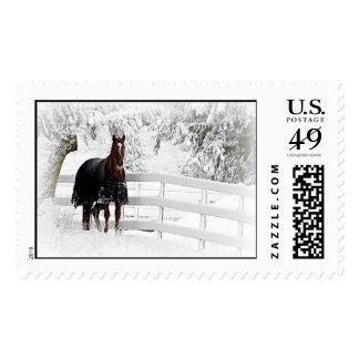 Winter Horse Postage Stamp
