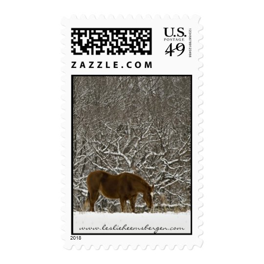 Winter Horse Stamp
